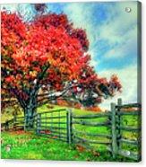 The Beauty Of Fall II - Blue Ridge Parkway Acrylic Print by Dan Carmichael