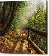 The Benton Trail Acrylic Print