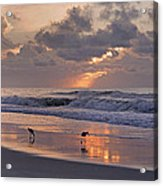 The Best Kept Secret Acrylic Print