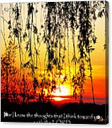The Bible Jeremiah Twentynine Acrylic Print