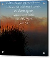 The Bible John Three Eight Acrylic Print