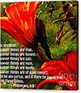 The Bible Philippians 4 Acrylic Print