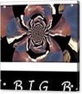 The Big Bang - Creation Of The Universe Acrylic Print