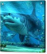 The Biggest Shark Acrylic Print
