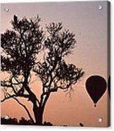 The Bird And The Balloon Acrylic Print
