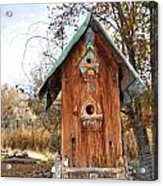 The Birdhouse Kingdom - Spotted Towhee Acrylic Print