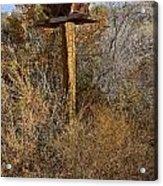 The Birdhouse Kingdom - Western Kingbird Acrylic Print