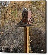 The Birdhouse Kingdom - Cowbird Home Acrylic Print