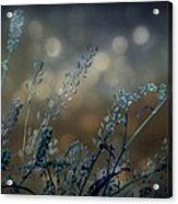 The Bling Of Blue Acrylic Print