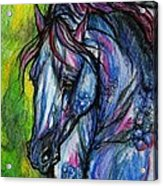 The Blue Horse On Green Background Acrylic Print