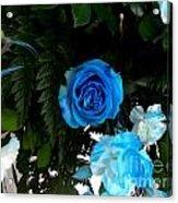 The Blue Pair Acrylic Print
