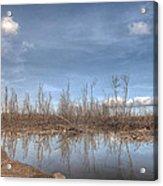 The Blue Water Desert Acrylic Print