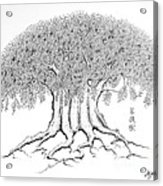 The Boddhi Tree Acrylic Print