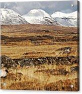 The Bog Road Acrylic Print