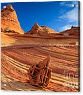 The Bone Yard In The North Coyote Buttes Acrylic Print