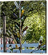 The Bottle Tree Acrylic Print