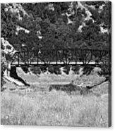The Bridge 13 Acrylic Print