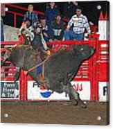 The Bull Rider Acrylic Print by Larry Van Valkenburgh