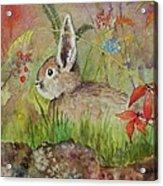 The Bunny Acrylic Print