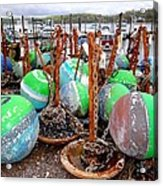The Buoys Of Summer Acrylic Print