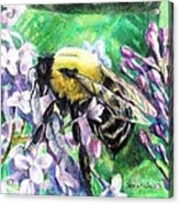 The Busy Bee And The Lilac Tree Acrylic Print