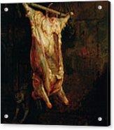 The Carcass Of An Ox, Late 1630s Acrylic Print