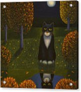 The Cat And The Moon Acrylic Print