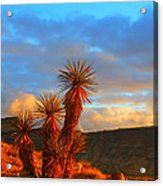 The Cerbat Foothills Acrylic Print