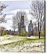 The Chicago Skyline Day-002 Acrylic Print