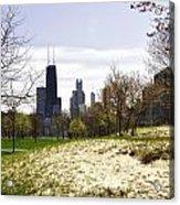 The Chicago Skyline Day-003 Acrylic Print