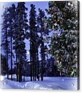 The Christmas Season Acrylic Print