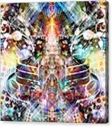 The Collective Acrylic Print