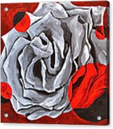 The Color Red Two Acrylic Print
