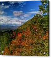 The Colors Of Fall Acrylic Print by Judy  Waller
