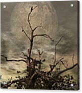 The Crow Tree Acrylic Print