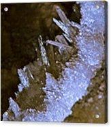 The Crystal Slipper Acrylic Print