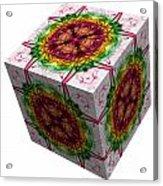The Cube 5 Acrylic Print