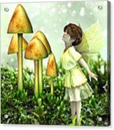 The Curious Fairy Acrylic Print