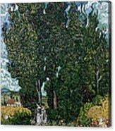 The Cypresses Acrylic Print