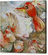 The Dance Of The Cardinals Acrylic Print by Susan Hanlon