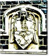 The Dark Eyed Angel  Acrylic Print