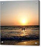 The Dazzle Of Twilight Acrylic Print by Vijinder Singh