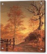 The Dead Tree Acrylic Print