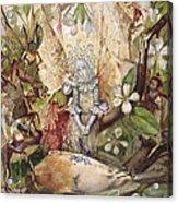 The Death Of Cock Robin Acrylic Print