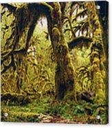 The Deep And The Dark Acrylic Print by Stuart Deacon