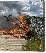 The Destruction Of Our Land Acrylic Print by Ronel Broderick