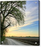 The Dirt Road Acrylic Print by JC Findley