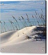 The Dunes Of Destin Acrylic Print