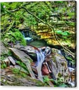 The Emerald Forest 14 Acrylic Print