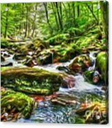 The Emerald Forest 15 Acrylic Print